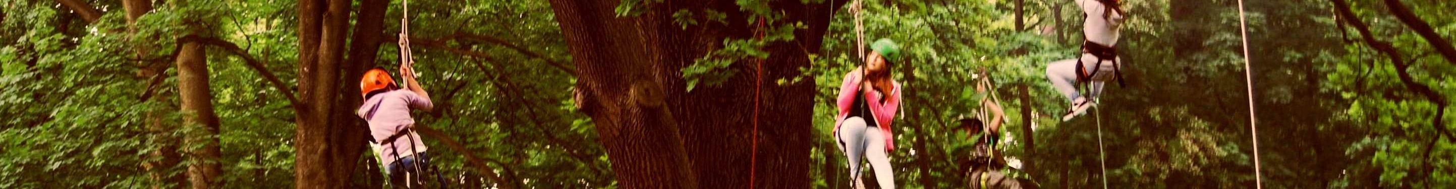 wspinaczka na drzewa dla dzieci1
